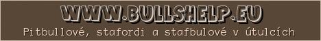 www.BULLSHELP.eu